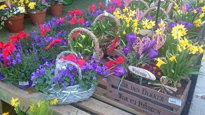 Moulton Nurseries Garden Centre & Coffee Shop