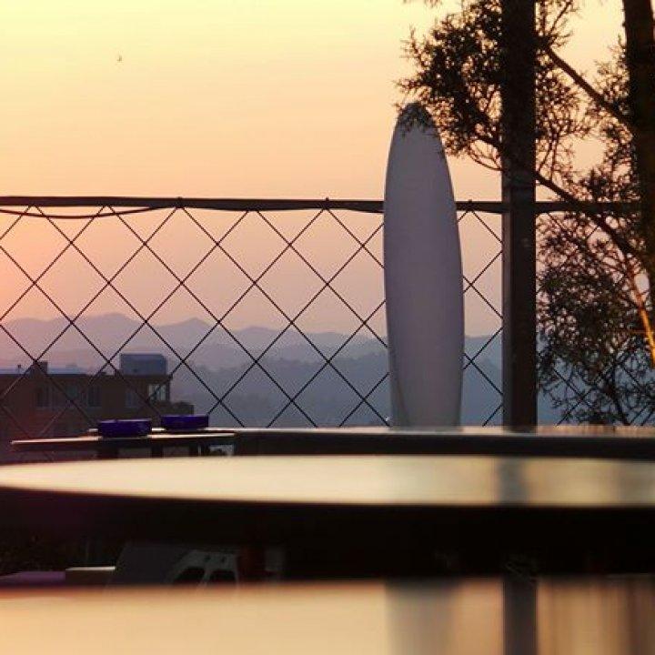Rooftop_Xvi