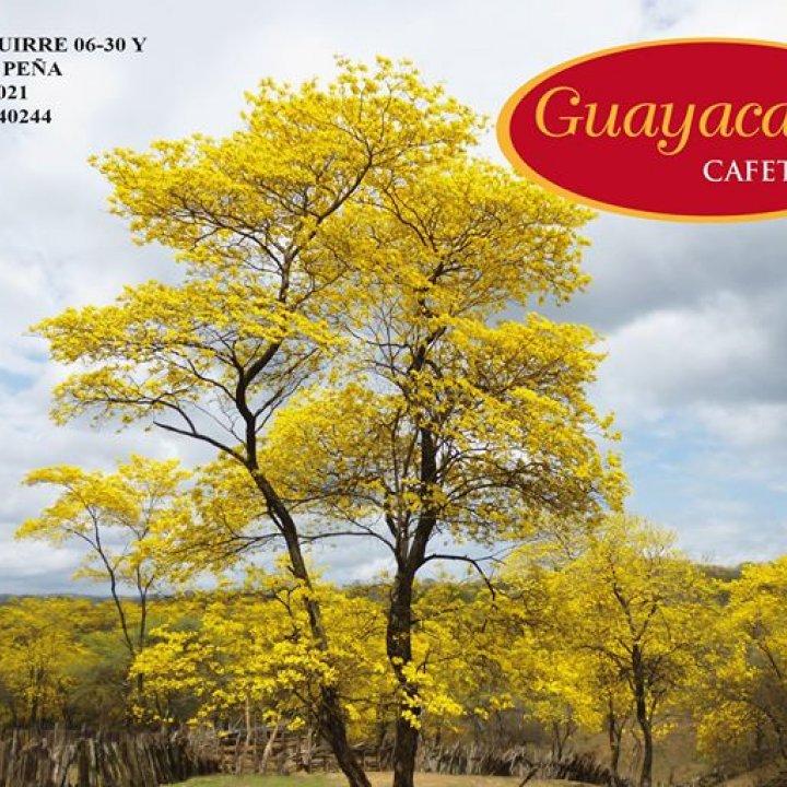 Guayacanes Cafetería