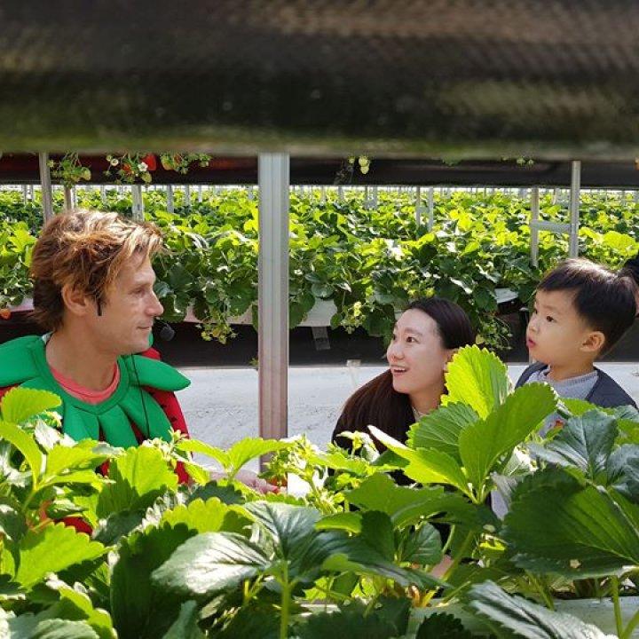 Cloud Berry Farm - 클라우드베리 농장