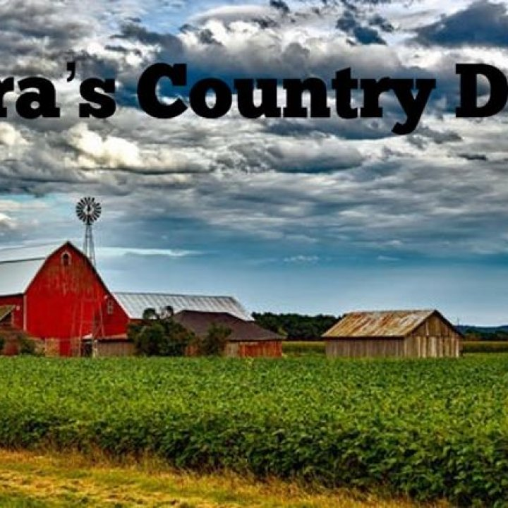 Laura's Country Diner