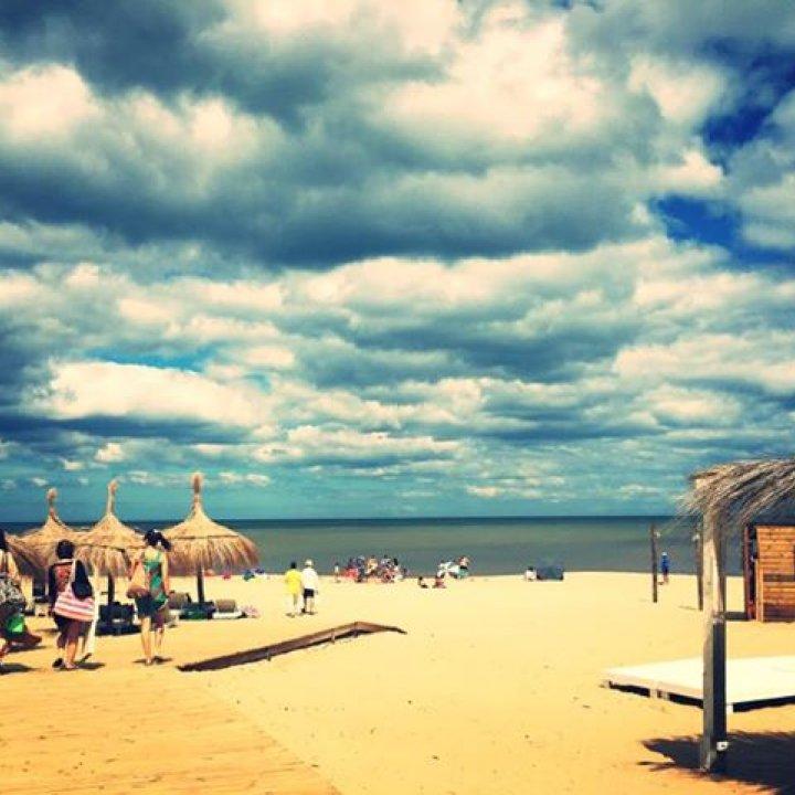 Moby Dick - Montoya Beach
